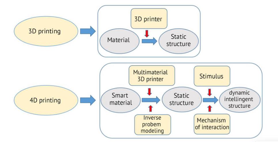 3D vs 4D PRINTING TECHNOLOGY_4D Printing