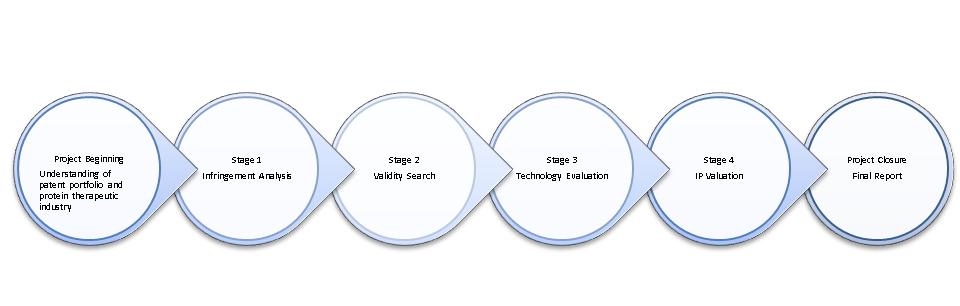 Project Summary_Patent Monetization Study