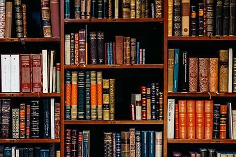 Non-patent Literature Search